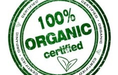 Top 6 organic food trends