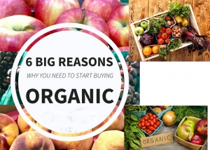 What you must know before buying Organic Food