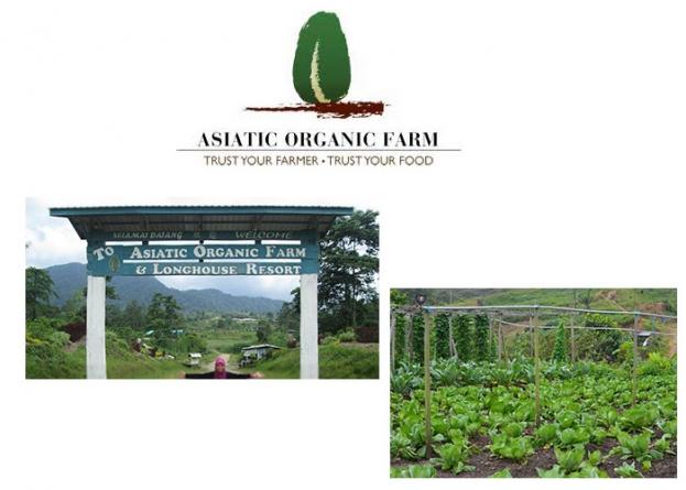 Asiatic Organic Farm