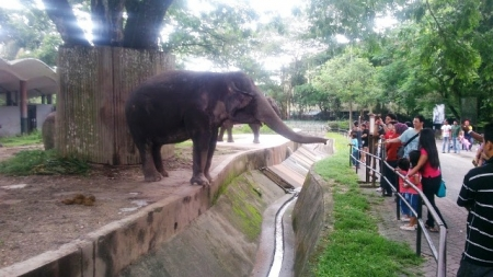 Top Zoos and Animal Parks